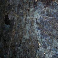 labrador_blue_madagascar_07-600