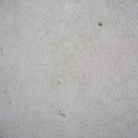 moleanos_fatima_02-600